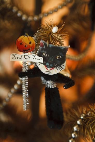 Halloween III-Philip Clayton-thompson-Photographic Print