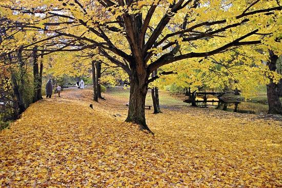 Halloween Scenic, New Jersey-George Oze-Photographic Print
