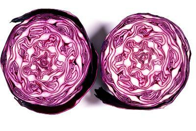Halved Red Cabbage-Dr. Keith Wheeler-Photographic Print