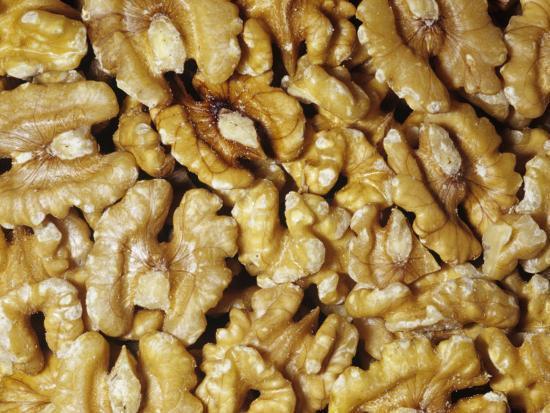 Halved Shelled Walnuts (Juglans)-Ken Lucas-Photographic Print