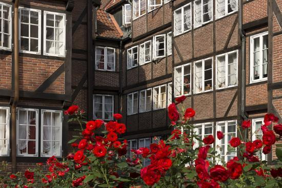 Hamburg, Neanderstrasse, Half-Timbered Houses, Facades, Flowers-Catharina Lux-Photographic Print