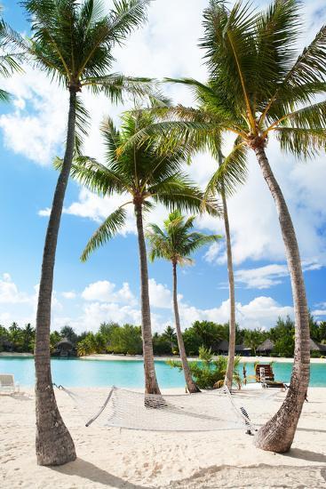 Hammock between Palm Trees at Beach on Bora Bora-BlueOrange Studio-Photographic Print