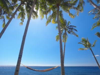 Hammock Between Palm Trees on Beach, Bali, Indonesia, Southeast Asia, Asia-Sakis Papadopoulos-Photographic Print