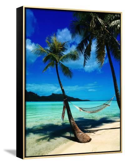 Hammock Hanging Seaside-Randy Faris-Framed Canvas Print