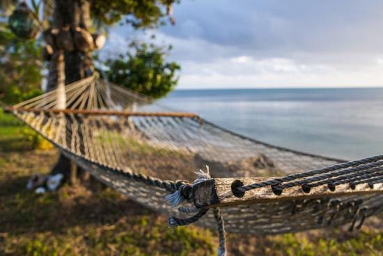 Hammock on a Beach in Ha'Apai Islands, Tonga, South Pacific-Michael Runkel-Photographic Print