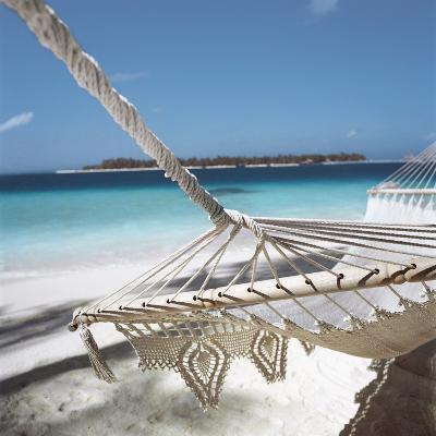 Hammock on a Beach--Photographic Print