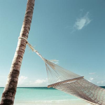 Hammock on Beach--Photographic Print