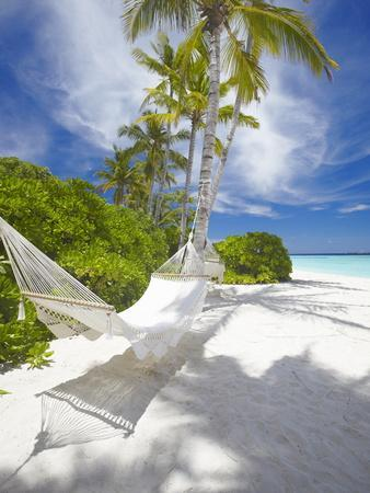 Hammock on Empty Tropical Beach, Maldives, Indian Ocean, Asia--Photographic Print