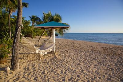 Hammock, Turner's Beach, St. Mary, Antigua, Leeward Islands-Frank Fell-Photographic Print