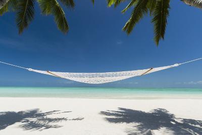 Hammock under Palms on a Tropical Beach-Pete Atkinson-Photographic Print