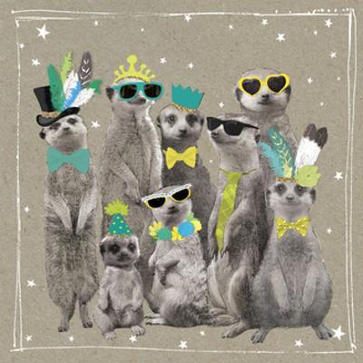 Fancy Pants Zoo I by Hammond Gower
