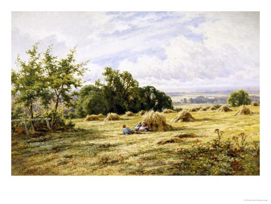 Hampshire Cornfield-Henry Parker-Giclee Print