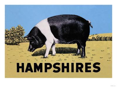 Hampshires--Art Print
