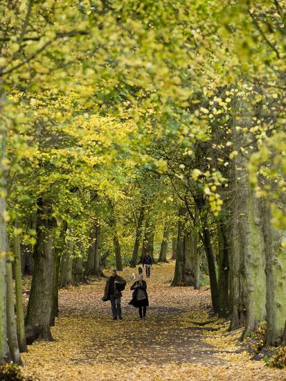 Hampstead Heath, North London, England, United Kingdom, Europe-Ben Pipe-Photographic Print