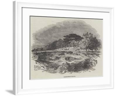 Hampstead Heath--Framed Giclee Print