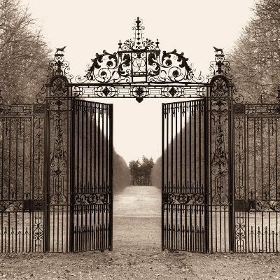 Hampton Gate-Alan Blaustein-Photographic Print