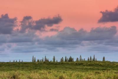 Hana Landscape, Maui-Vincent James-Photographic Print