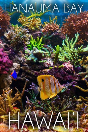 Hanauma Bay, Hawai'i - Fish and Coral 2-Lantern Press-Wall Mural