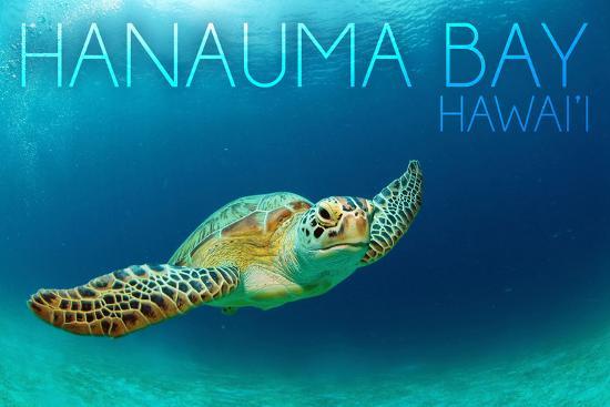 Hanauma Bay, Hawai'i - Sea Turtle-Lantern Press-Wall Mural