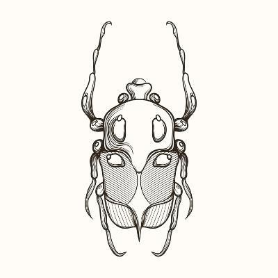 Hand Drawn Engraving Sketch Scarab Beetle, May Bug, European Diving Beetle. Vector Illustration For-panki-Art Print
