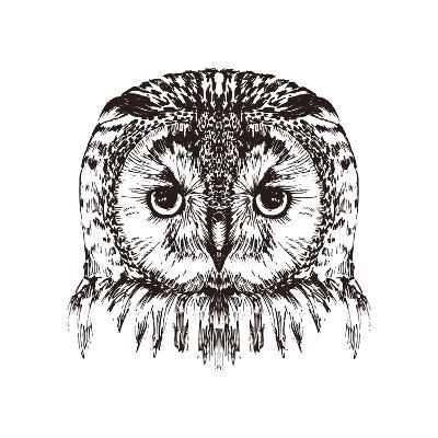 Hand Drawn Owl Portrait, Vector Illustration- Melek8-Art Print