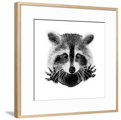 Hand Drawn Raccoon-LViktoria-Framed Art Print