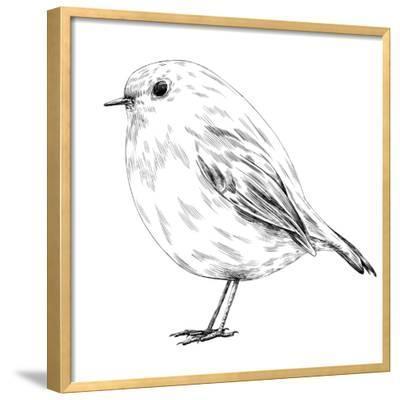 Hand-Drawn Robin-aggressor-Framed Art Print