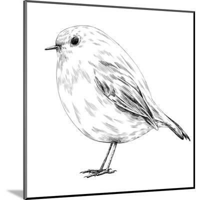 Hand-Drawn Robin-aggressor-Mounted Print