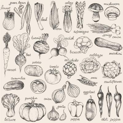 https://imgc.artprintimages.com/img/print/hand-drawn-vegetables_u-l-pof0se0.jpg?p=0