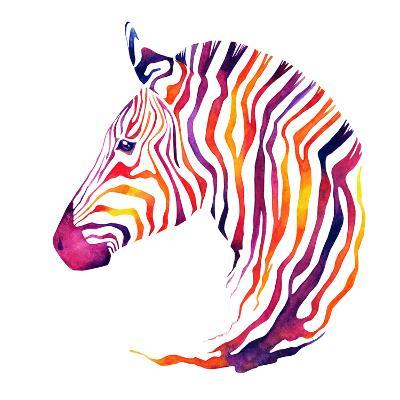Hand Drawn Watercolor Zebra's Head. Good Quality of Illustration. Multicolor on White Background. N-Uni Ula-Photographic Print
