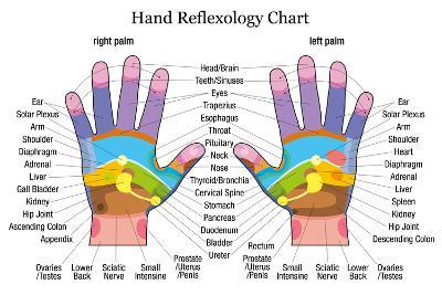 Hand Reflexology Chart Description-Peter Hermes Furian-Art Print