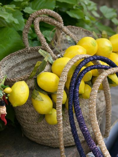 Handbag with Lemons, Positano, Amalfi Coast, Campania, Italy-Walter Bibikow-Photographic Print