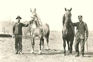 Handlers with Sturdy Horses