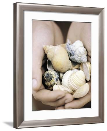 Hands Holding Seashells--Framed Photographic Print