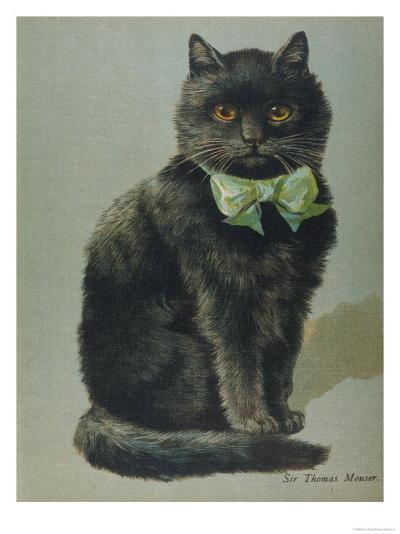 Handsome Black Cat Sir Thomas Mouser Sits Posed with a Green Ribbon Around His Neck--Giclee Print