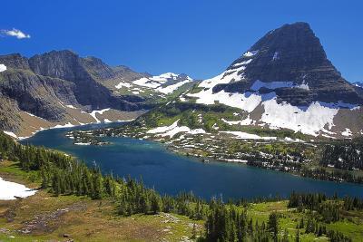 Hanging Gardens, Logan Pass, Glacier National Park, Montana, USA-Charles Gurche-Photographic Print