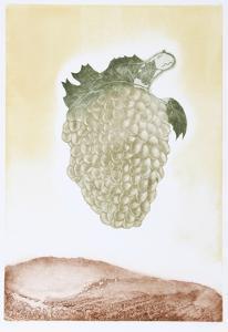 Golden Grapes by Hank Laventhol