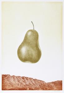 Pear by Hank Laventhol