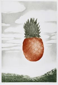 Pineapple by Hank Laventhol