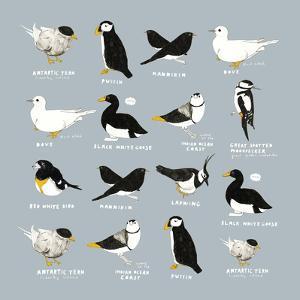 Birds by Hanna Melin