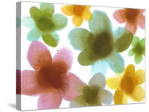 Floral Friends III by Hannah Carlson