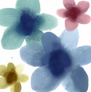 Floral Joy I by Hannah Carlson