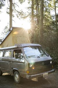 A Dog Peaks His Head Out In The Morning From A Volkswagen Bus On The Washington Coast by Hannah Dewey