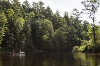 Two People Canoe Along the Kennebec River in Maine