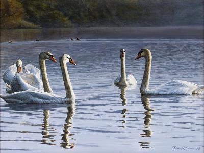 Hanover Swans Five-Bruce Dumas-Giclee Print