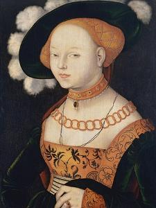 Portrait of a Lady, Ca 1530 by Hans Baldung