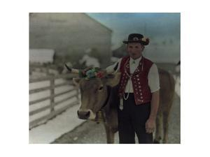 A Young Alpine Herdsman Poses with His Prize Winning Cow by Hans Hildenbrand
