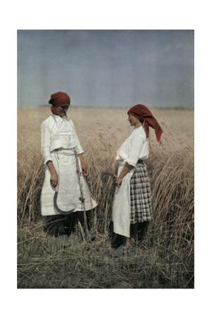 Two Women Stand in a Field to Help Harvest Grain Outside Mohacs by Hans Hildenbrand