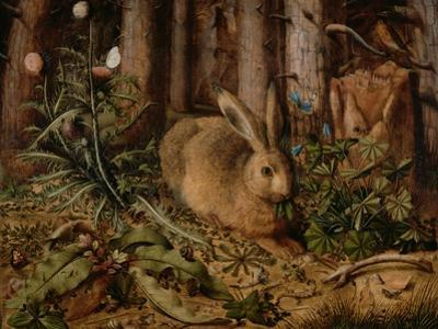 A Hare in the Forest, c. 1585 by Hans Hoffmann
