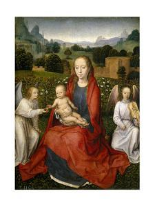 Virgin and Child and Two Angels, 1480-1490 by Hans Memling